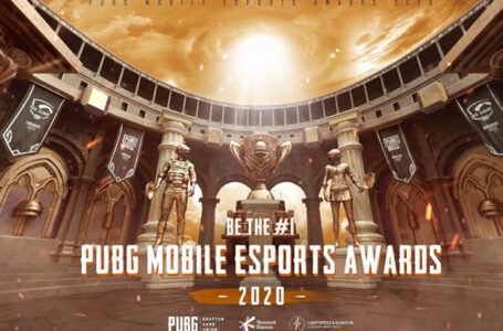 Pilih Gamer Pro Favorit Kamu di PUBG Mobile Esports Awards 2020