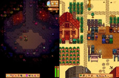 Stardew Valley Akan Hadirkan Mode Co-Op Splitscreen